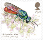 Brilliant Bugs £1.70 Stamp (2020) Ruby-Tailed Wasp  (Chrysis ignita agg.)